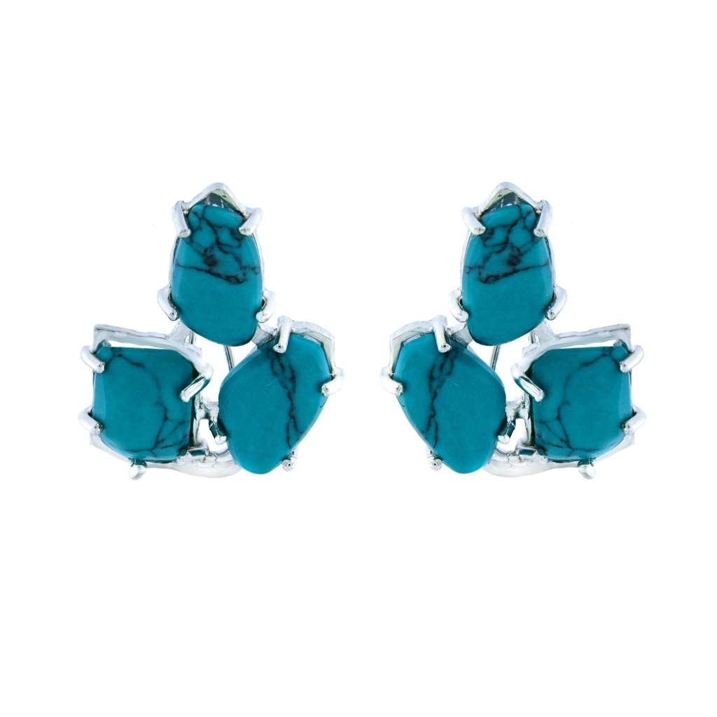 [MZ0169A113] Honor Collection Earrings